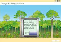 Thumbnail für 'A day in the Amazon rainforest'